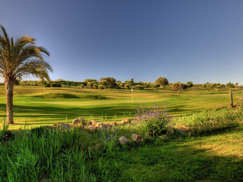 boavista golf course portugal 01