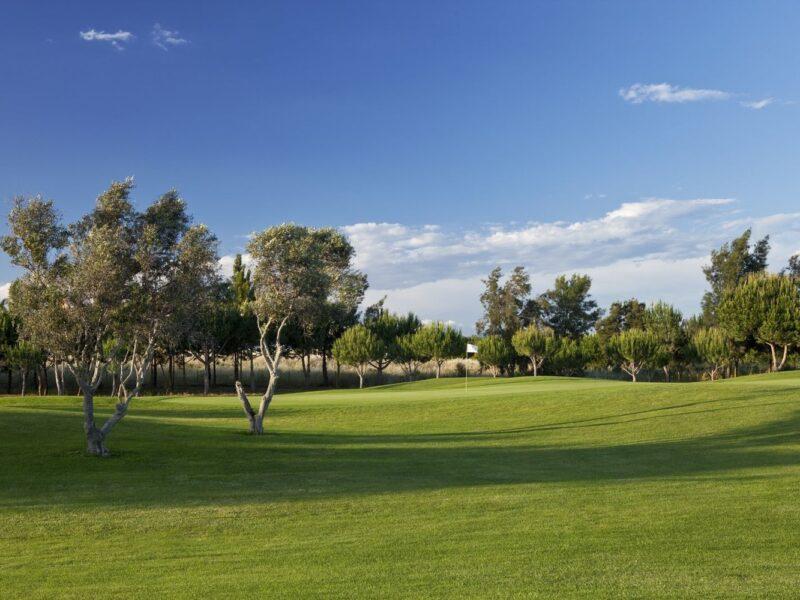 millenium golf course portugal 03