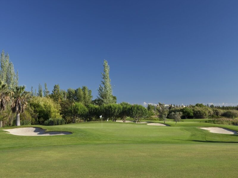 millenium golf course portugal 04